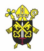 Diecéze Brno